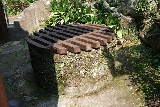 裏庭に井戸発見