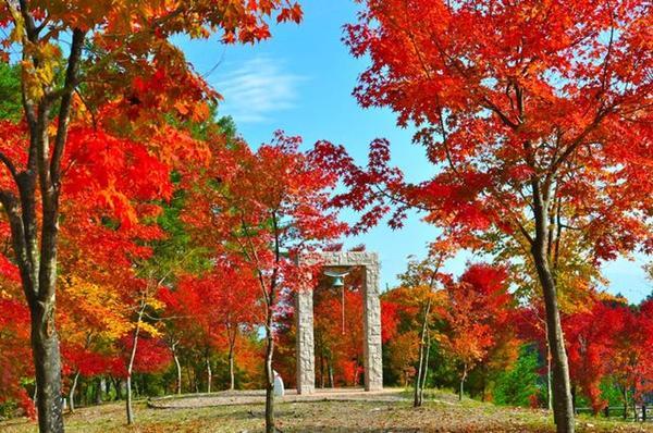 森と水のアウトドア体験広場「永遠の鐘」
