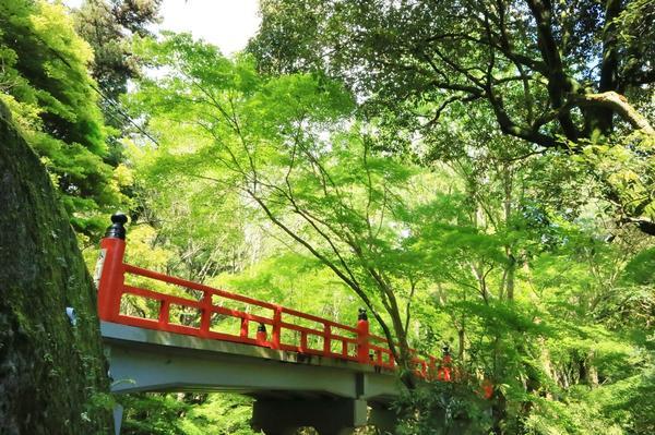 新緑に朱色の鳥居橋