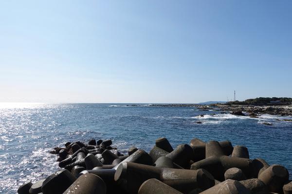 防波堤からの景色