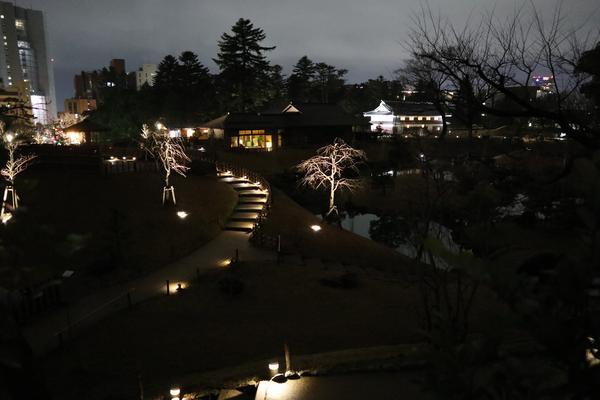 上から見下ろした玉泉院丸庭園