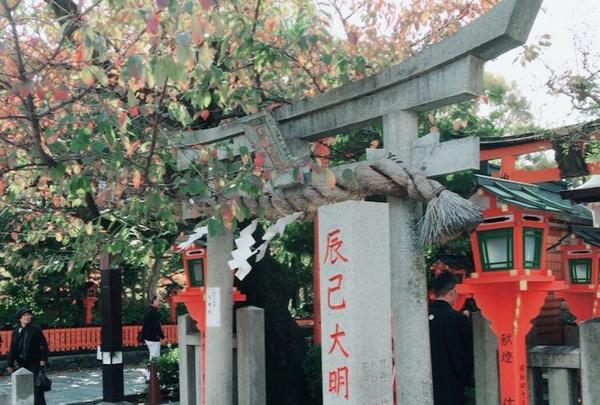 巽橋の写真・動画_image_101408