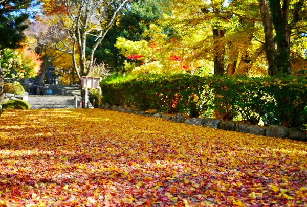 御嶽山 播州清水寺の写真・動画_image_104439
