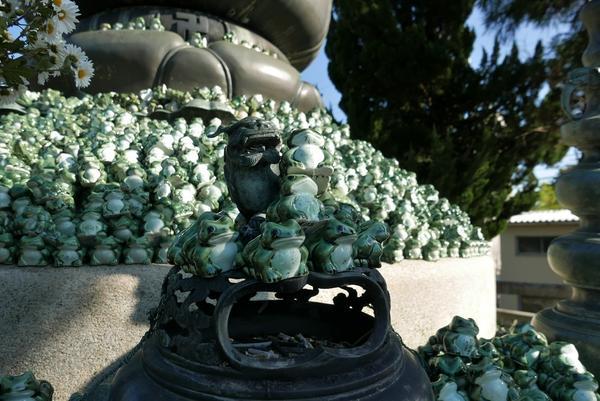木之本地蔵院の写真・動画_image_104652