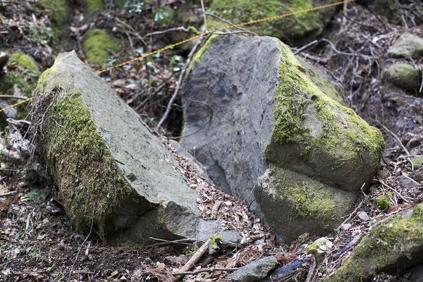 免の石の写真・動画_image_111180