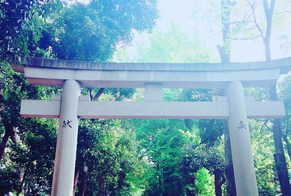 代々木八幡宮の写真・動画_image_113161