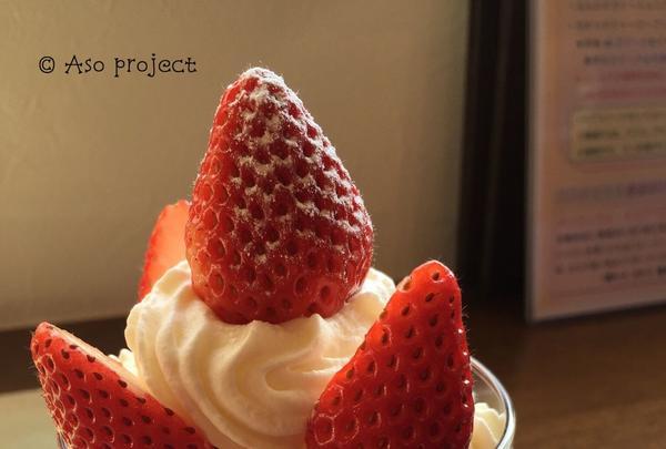 珈琲と紅茶 瑞季の写真・動画_image_114866