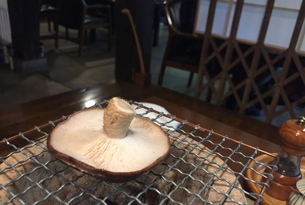 山家料理 湯の岳庵の写真・動画_image_115735
