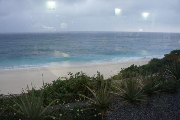 蒼い珊瑚礁の写真・動画_image_120318
