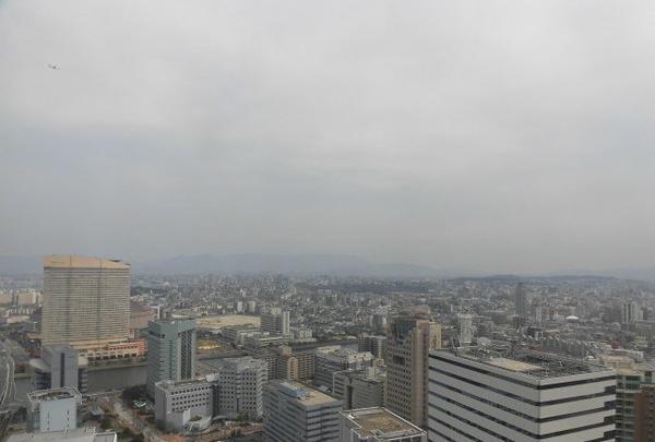 福岡タワーの写真・動画_image_123358