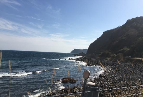 伊豆半島の写真・動画_image_127480