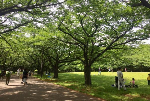 大井ふ頭海浜公園の写真・動画_image_134482