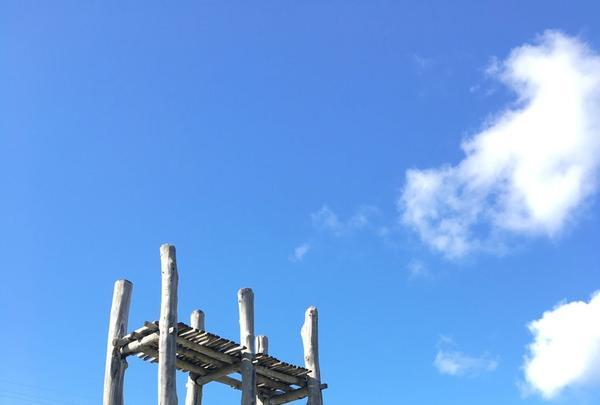 三内丸山遺跡の写真・動画_image_141744