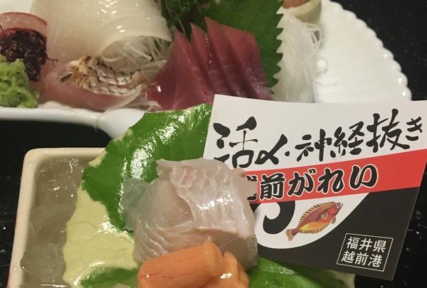 料理宿やまざきの写真・動画_image_149238