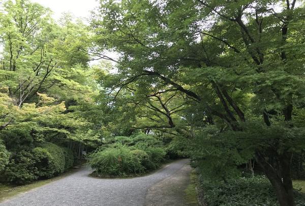 有楽苑の写真・動画_image_150152