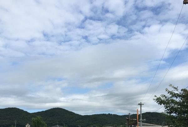 吉備津彦神社の写真・動画_image_152595