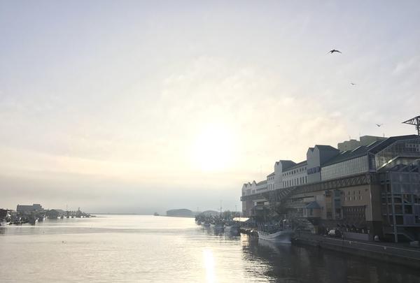 幣舞橋の写真・動画_image_156232
