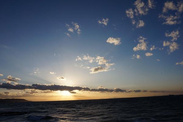 クラフトサーカスの写真・動画_image_169588