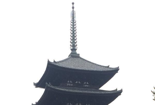 興福寺 南円堂(西国9番)の写真・動画_image_170364