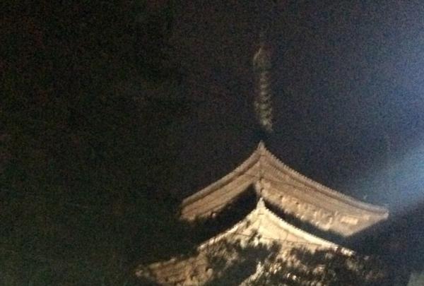 興福寺 南円堂(西国9番)の写真・動画_image_170440