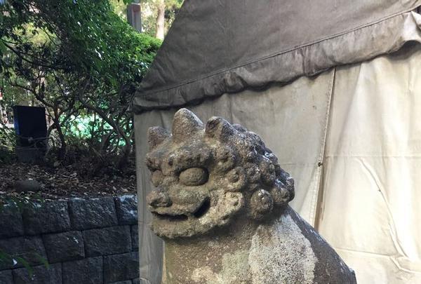 大崎八幡宮の写真・動画_image_171162