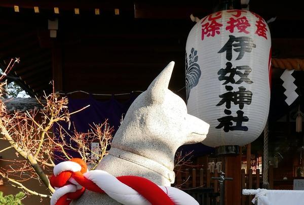 伊奴神社の写真・動画_image_174724