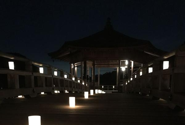 奈良公園 浮見堂の写真・動画_image_177079