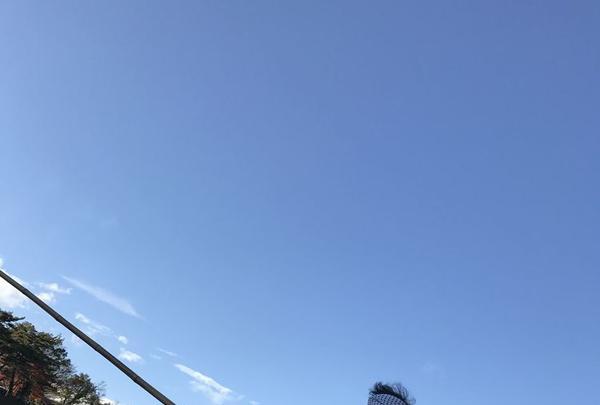 長瀞ライン下りの写真・動画_image_178008