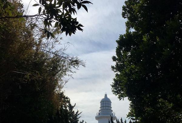野島埼灯台の写真・動画_image_180336