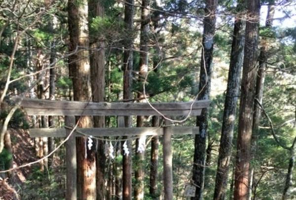 玉置神社の写真・動画_image_184777