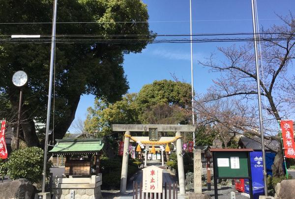 伊奴神社の写真・動画_image_185821