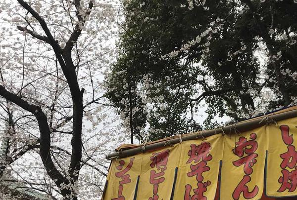 上野東照宮の写真・動画_image_185969