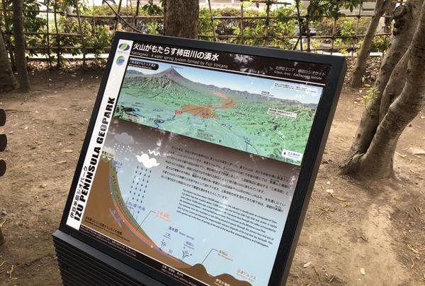 柿田川公園の写真・動画_image_187548