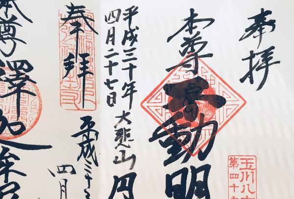 円光院の写真・動画_image_191064