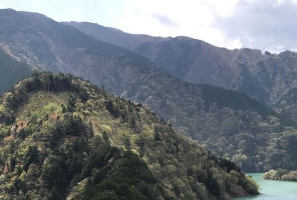 寸又峡温泉の写真・動画_image_193688