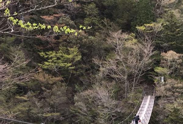 寸又峡温泉の写真・動画_image_193691