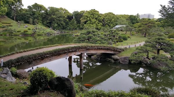 清澄庭園の写真・動画_image_204904