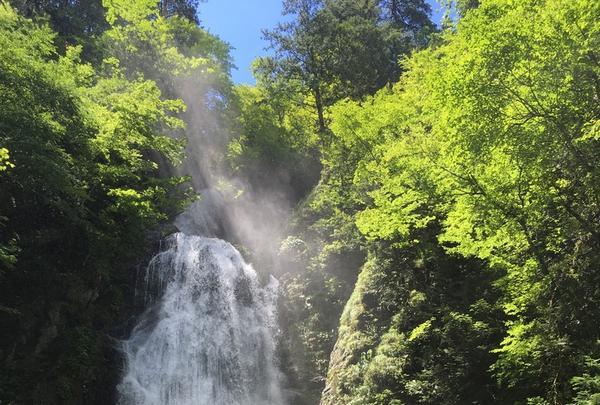 抱返り渓谷の写真・動画_image_209359