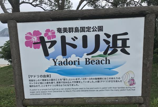 ヤドリ浜自然海水浴場の写真・動画_image_212077