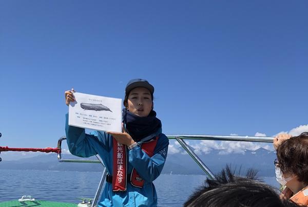 観光船・民宿はまなすの写真・動画_image_212829