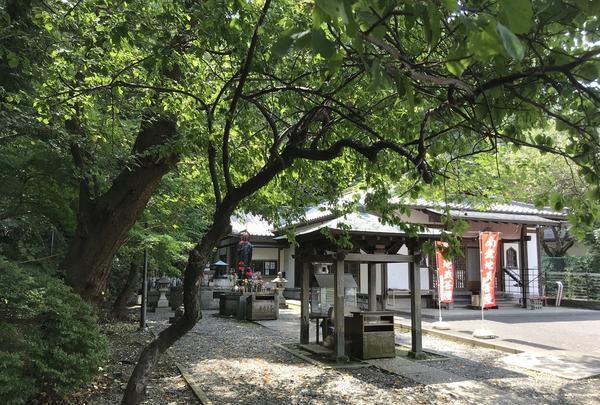 総持寺の写真・動画_image_222154