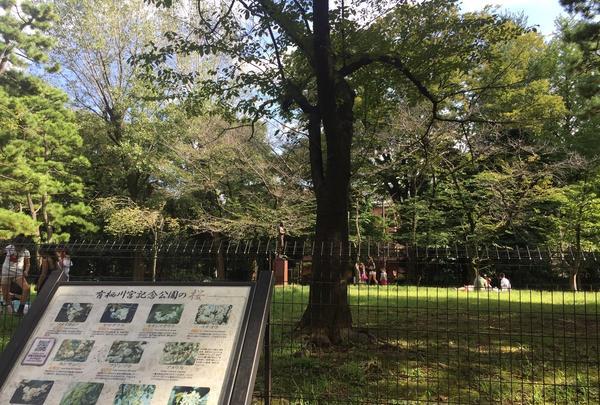 有栖川宮記念公園の写真・動画_image_223115