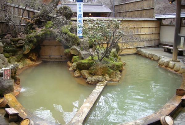露天風呂の写真・動画_image_233855