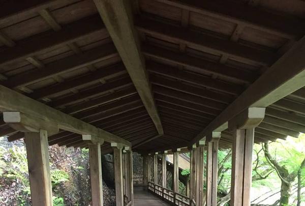 永観堂(禅林寺)の写真・動画_image_239293
