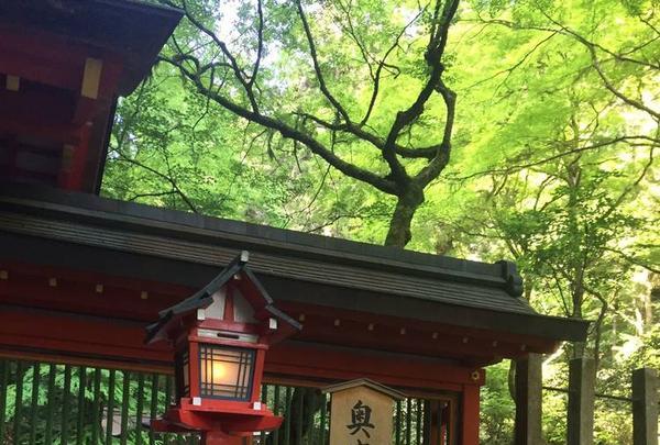 貴船神社 奥宮の写真・動画_image_239365