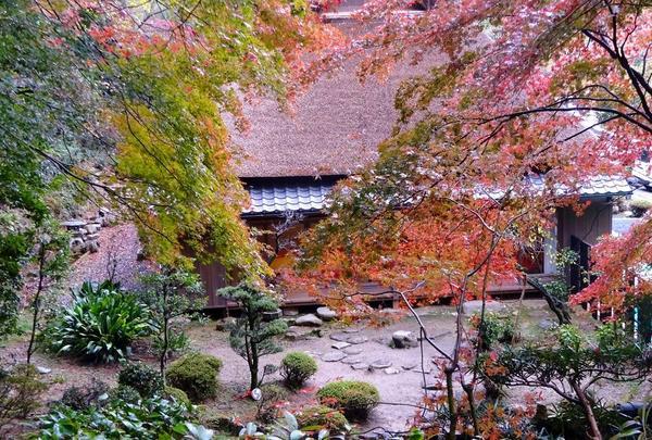 胡宮神社の写真・動画_image_240417