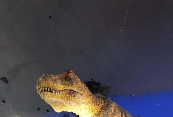 福井県立恐竜博物館の写真・動画_image_244028
