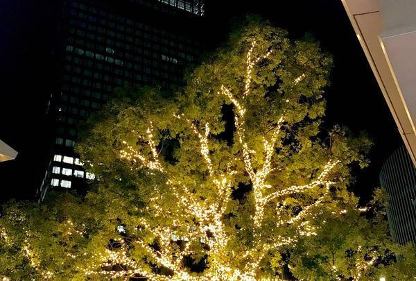 名古屋駅の写真・動画_image_252633