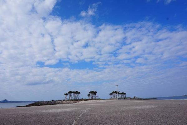 エメラルドビーチの写真・動画_image_252731