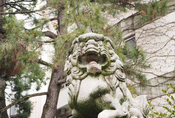 安江八幡宮の写真・動画_image_254282